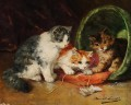 kittens reading a book Alfred Brunel de Neuville